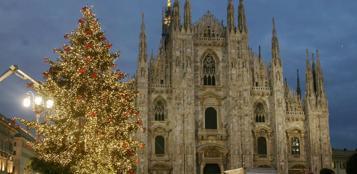 L'albero di Natale 2012 in piazza Duomo (Fotogramma)