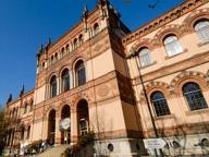 Domenica gratis, in 17mila nei musei: exploit per quello di Storia Naturale