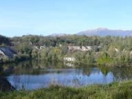 «Dal Parco alla Tavola», alla scoperta dell'olio dop dei «Laghi Lombardi»