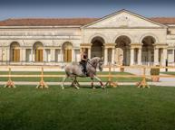 I cavalli ritornano a Palazzo Te Così rivive la Corte dei Gonzaga