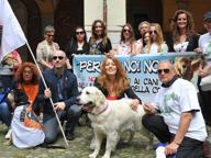 «Illegittimo vietare i parchi ai cani» La vittoria della Lav a Lodi