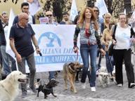 Lodi, la «marcia della vittoria» con i cani