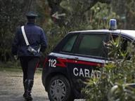 È una 35enne svizzera la donna trovata morta nei boschi del Comasco