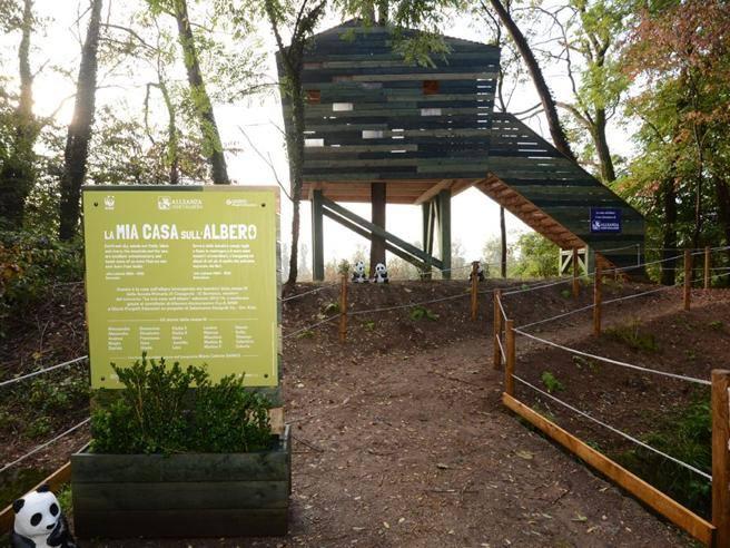 Nell oasi wwf di vanzago la casa sull albero progettata for Casa sull albero firenze